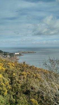 Looking east at Dalkey Island from Killiney Hill
